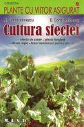 Cultura sfeclei (sfecla de zahar, sfecla furajera, sfecla rosie, loturi semincere pentru sfecla)